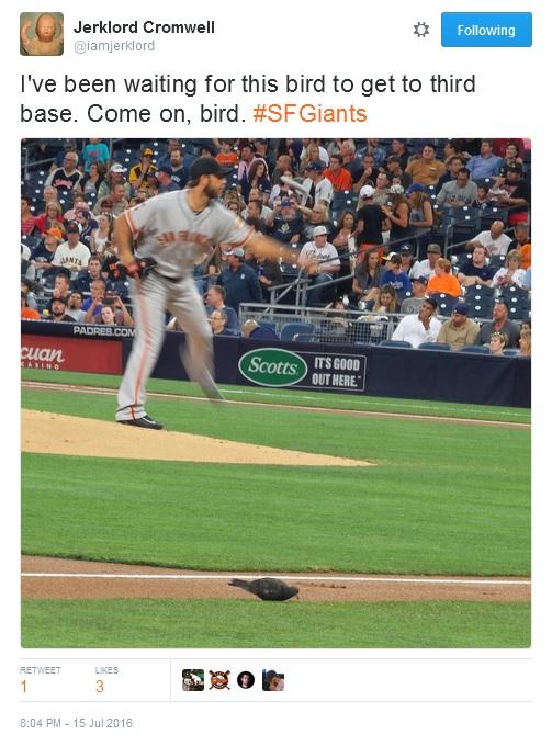 Giants-Bumgarner-Snotrocket-2016-07-15-Bird