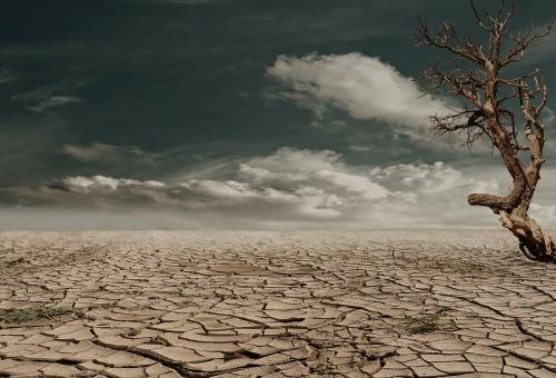 wasteland-desert